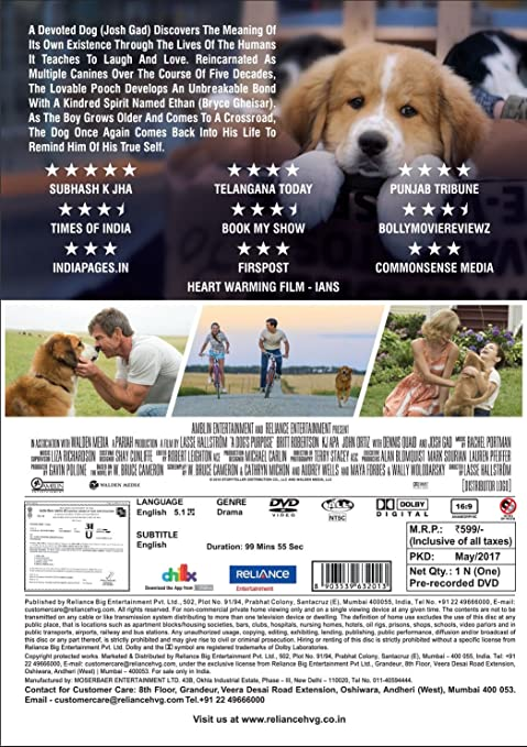 Amazonin Buy A Dogs Purpose DVD Bluray Online At Best Prices - One boy dog heart warming