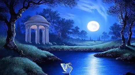 Buy Avikalp AWI3116 Swan Lake Night Full Moon Trees Grass Hd