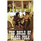 W. E. B. Du Bois - The Souls of Black Folk (English Edition)