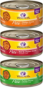 Wellness Complete Health Natural Grain Free Wet Canned Cat Food Pate Recipe Best Sellers Variety Pack