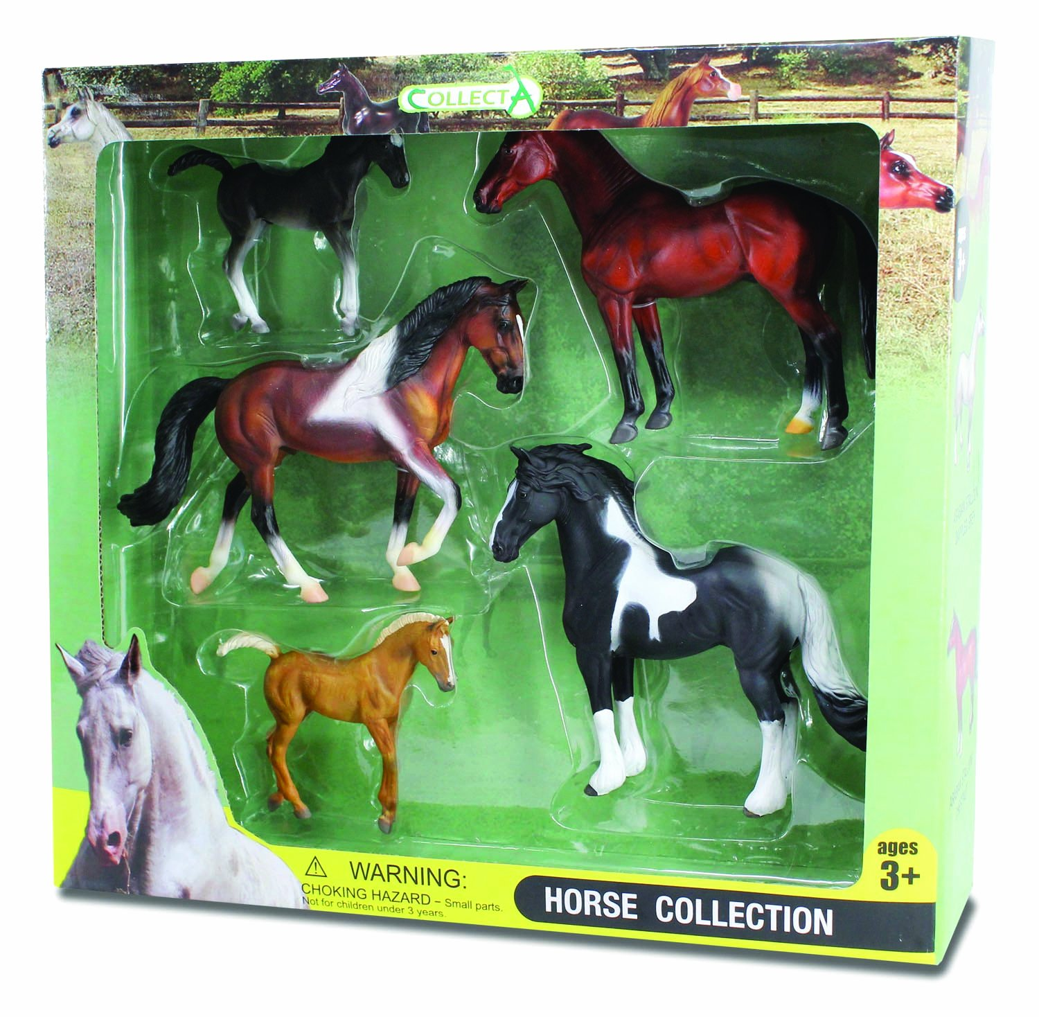 CollectA Horse Life Window Figure Boxed Set (5-Piece), Set 1