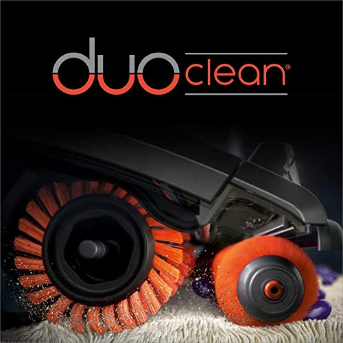 The brush rolls in DuoClean technology