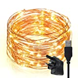 Led String Lights,TechRise 10-Meters 100 LEDS Star Starry Copper Wire Fairy String Lights For Holiday Party Wedding Christams Decoration - Warm Light