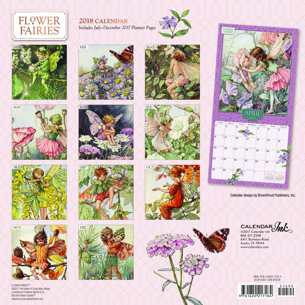 Flower Fairies 2018 Calendar Calendar Ink 9781620217184 Amazon