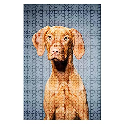 1000 Pieces Wooden Jigsaw Puzzle Portrait of a Magyar Vizsla Dog Dog Portrait Stock Pictures Royalty Fun and Challenging Board Puzzles for Adult Kids Large DIY Educational Game Toys Gift Home Decor: Toys & Games
