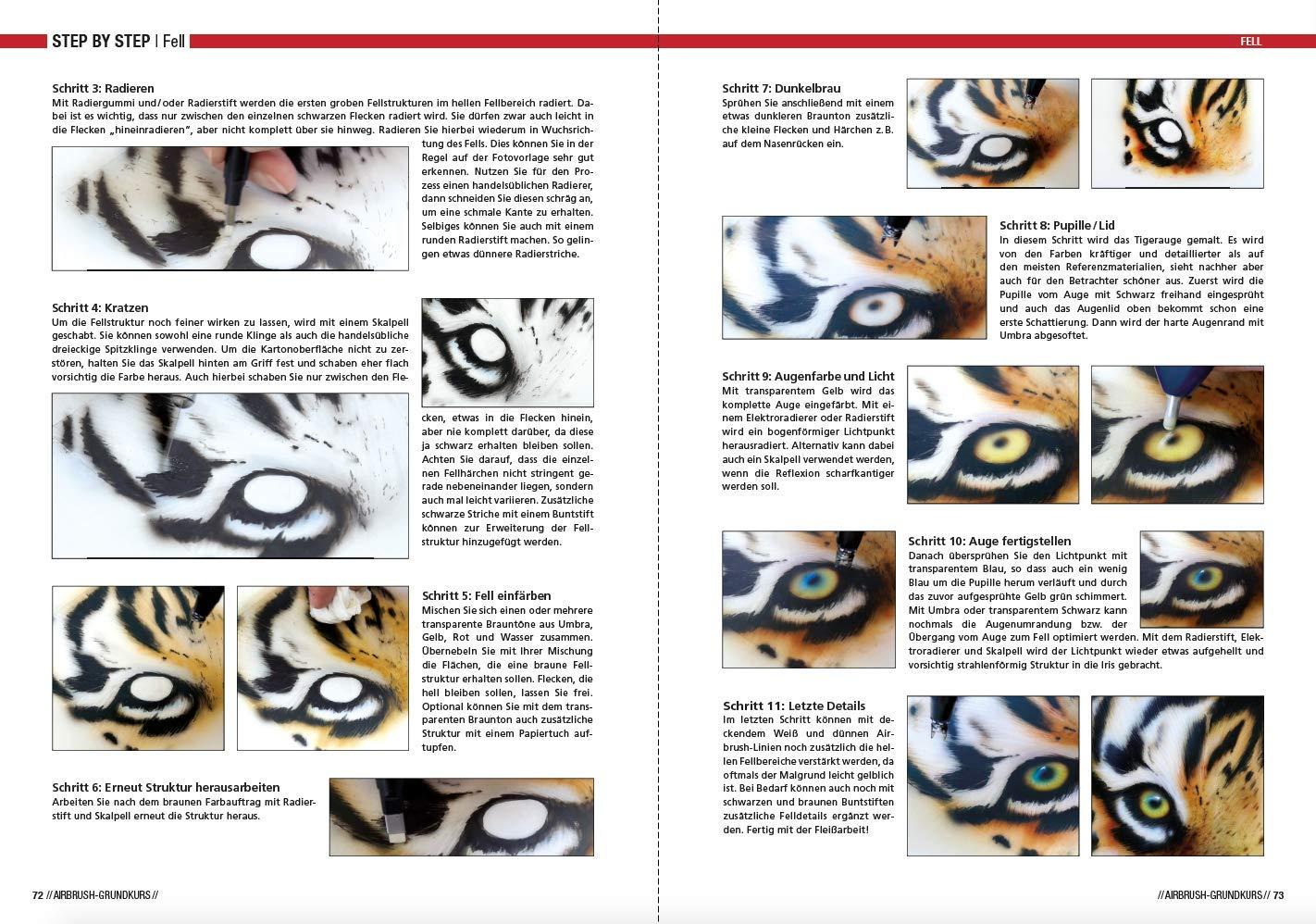 Airbrush-Grundkurs: Das Einsteigerhandbuch: Amazon.es: Hassler, Roger: Libros en idiomas extranjeros