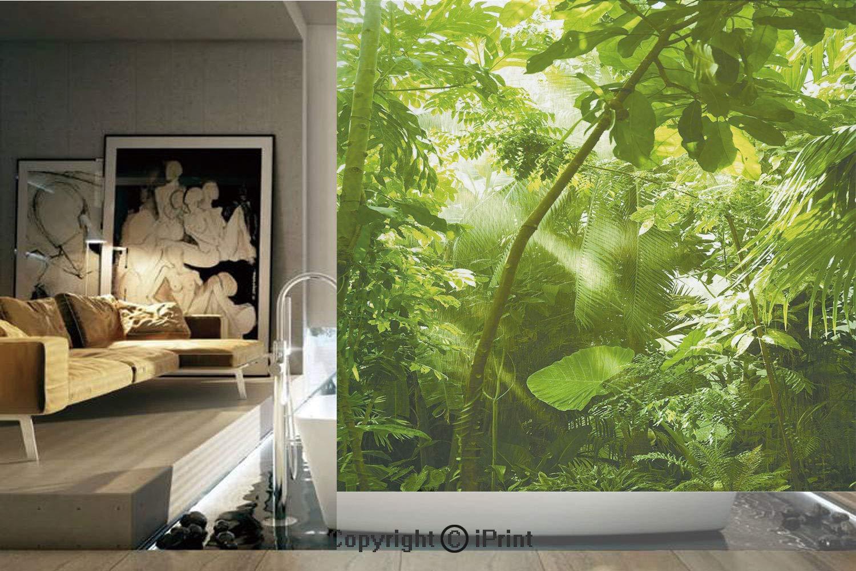 装飾プライバシーウィンドウフィルム/枝に魅力的な葉 エキゾチックなセッティングのフローラルアレンジメント ジャングルテーマグリーン/接着剤不使用 自己静電気でくっつく ホーム ベッドルーム バスルーム キッチン オフィス 装飾 シダグリーン W41.7xL41.7 Inches YBLT_1904SZHL_11751_K106xG106 B07QS2D8JN D011 W41.7xL41.7 Inches