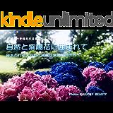 雨の日の紫陽花写真集Volume 5 自然と紫陽花に囲まれて: 緑あふれる大自然と綺麗な紫陽花の世界へ