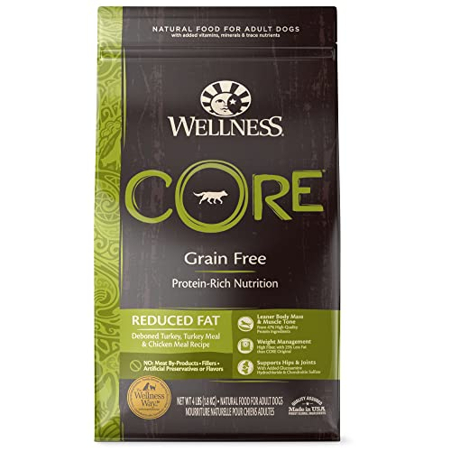 Wellness Core Natural Grain Free Dry Dog Food Review