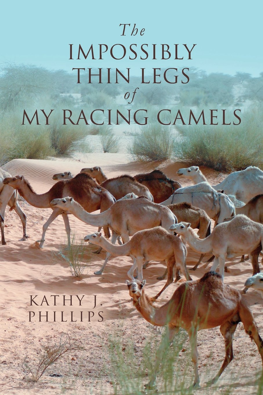 The Impossibly Thin Legs of My Racing Camels ebook