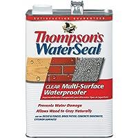 Thompson's WaterSeal Multi-Surface Waterproofer