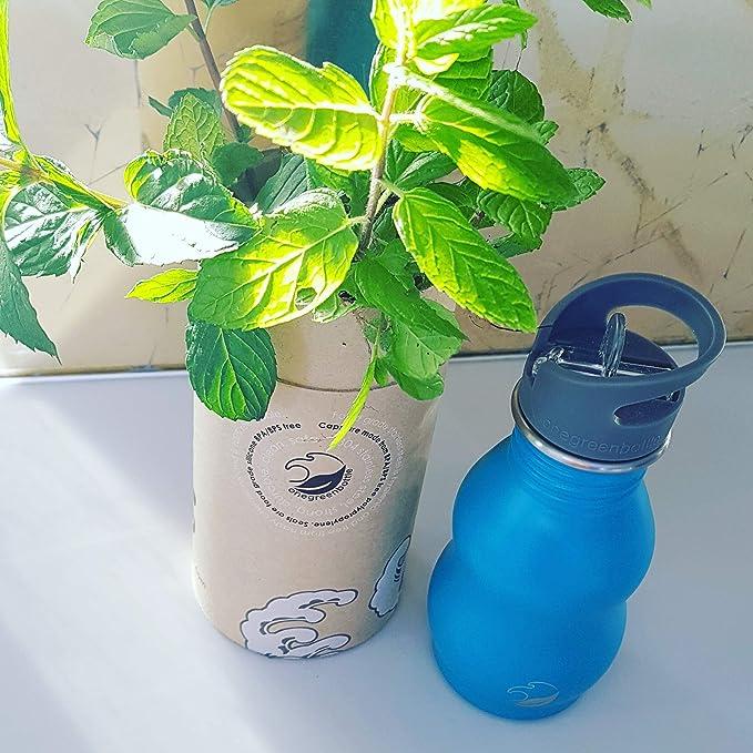 500 ml oro Quench Pac botella de acero inoxidable con curvas: Amazon.es: Deportes y aire libre