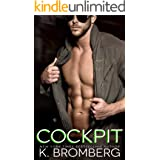 Cockpit: (previously titled Worth the Risk) (Everyday Heroes Series Book 3)
