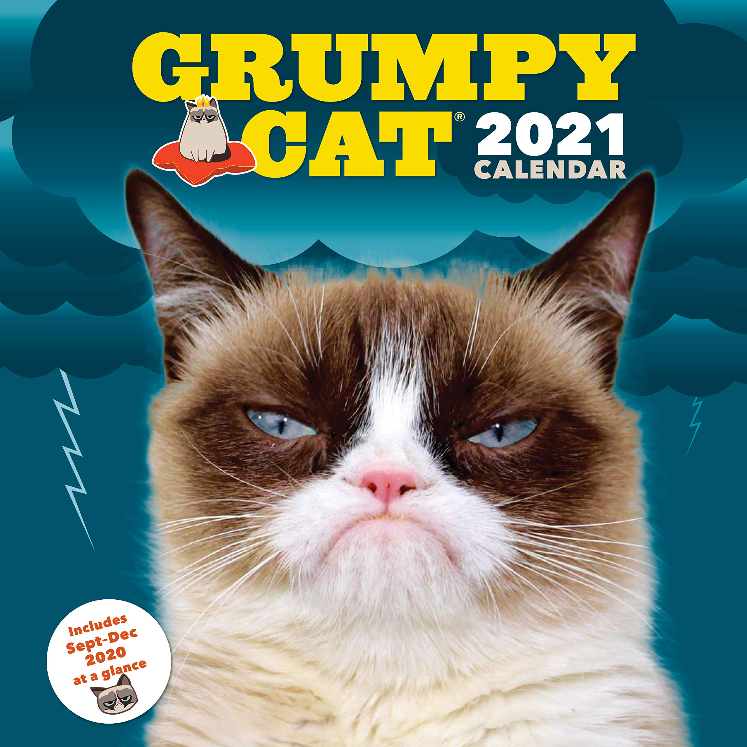 Grumpy Cat Calendar 2022.Grumpy Cat 2021 Wall Calendar Cranky Kitty Monthly Calendar Funny Internet Meme 12 Month Calendar Grumpy Cat 9781452177359 Amazon Com Books