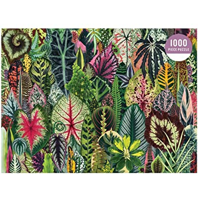 Houseplant Jungle 1000 Piece Jigsaw Puzzle for Adults, Plant Jigsaw Puzzle with Mix of Succulents & Other Household Plants, Fun Indoor Activity, Multicolor: Toys & Games