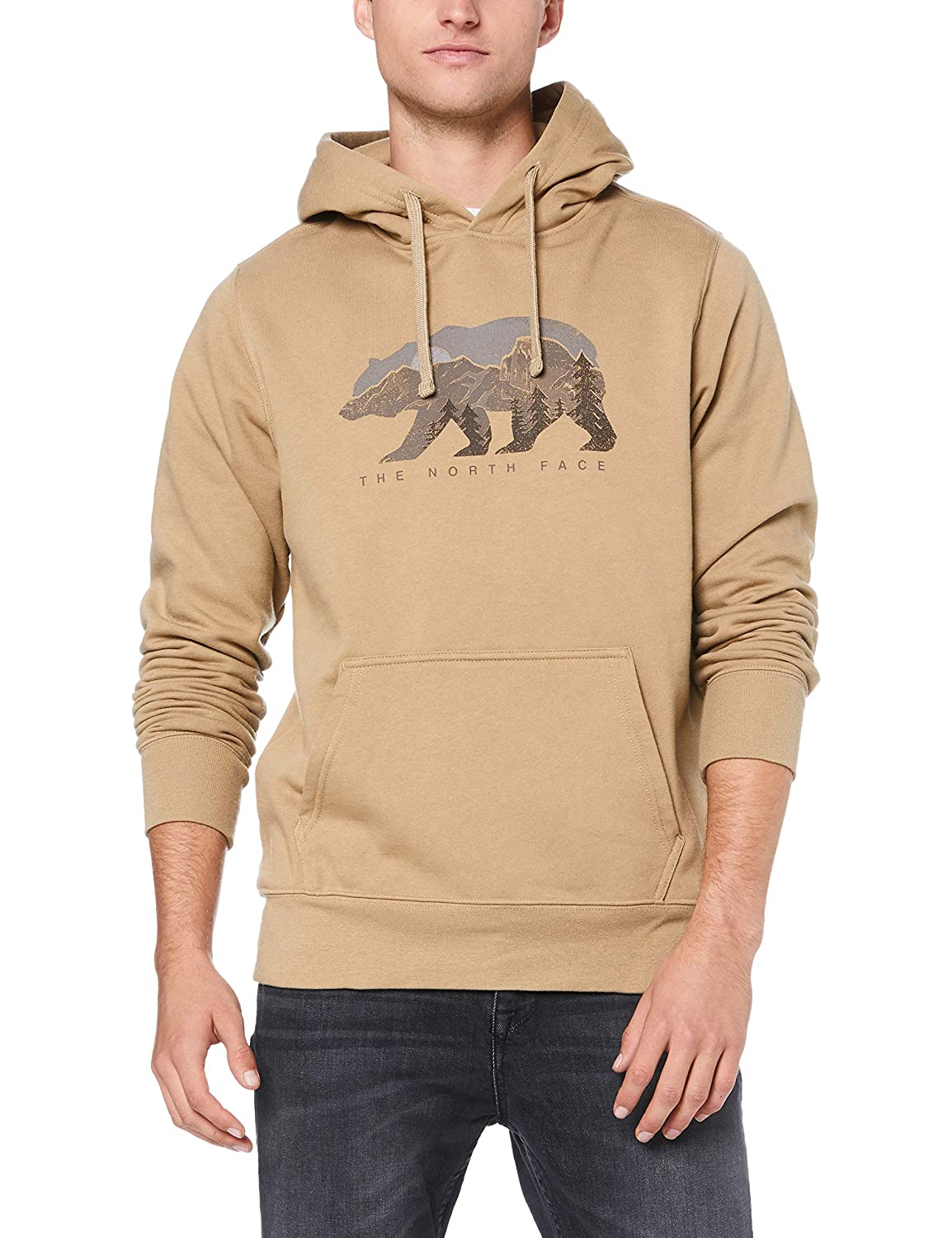 451f26705 The North Face Men's Bearscape Pullover Hoodie