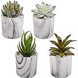 C APPOK Artificial Succulents Plants Fake Succulent Potted Plants Decor - 4 Pack Mini Flocking Faux Succulents…