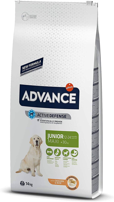 ADVANCE Maxi Junior - Pienso para Perros Junior de Razas Grandes - 14 Kg