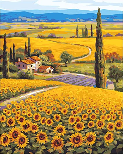 Amazon Com Diy Pbn Paint By Numbers Sunflowers Garden 16 By 20