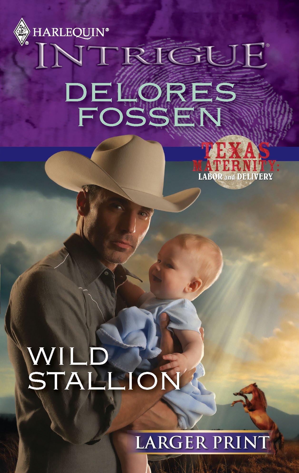 Download Wild Stallion pdf