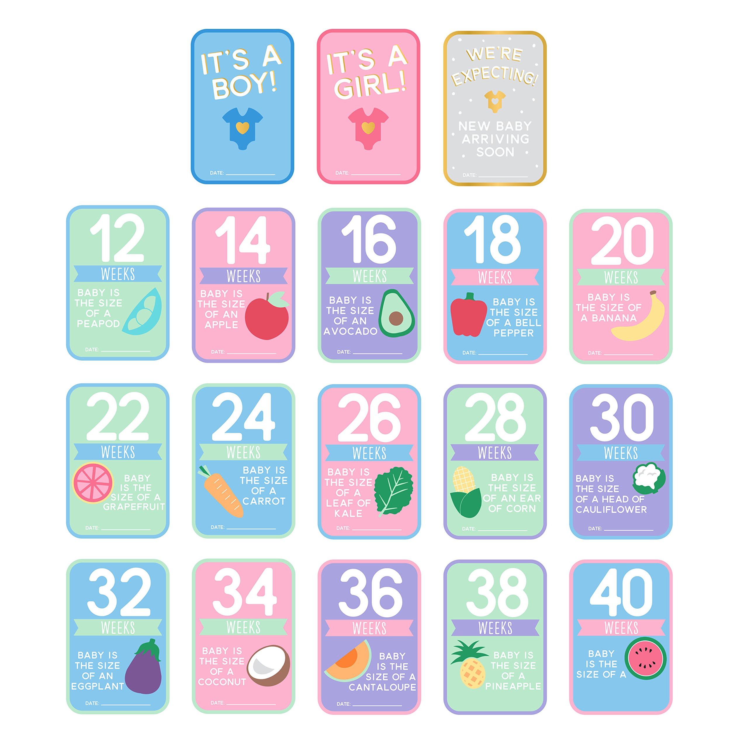 Pearhead Pregnancy Countdown Photo Cards, Multi by Pearhead