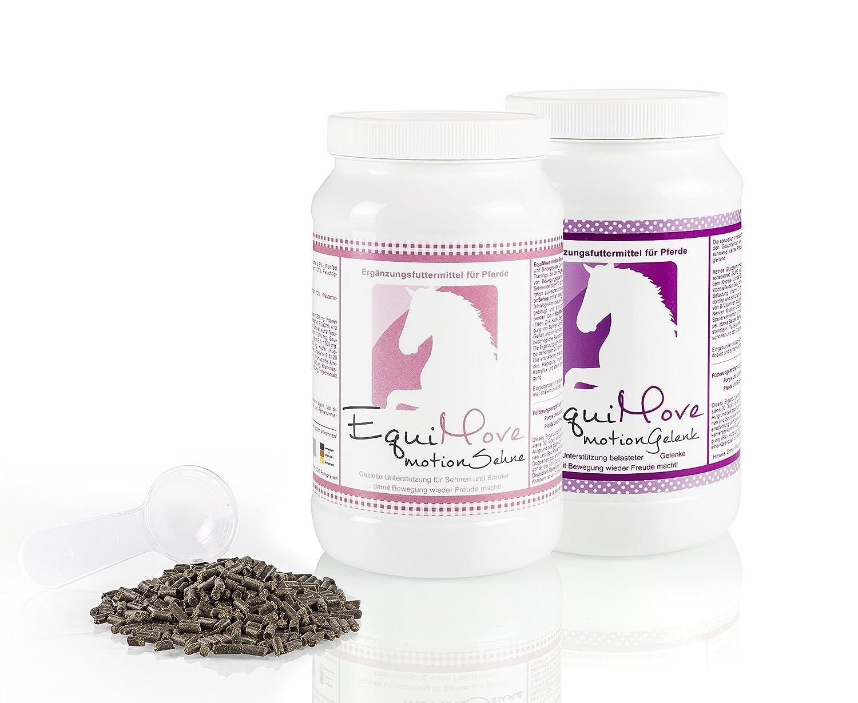 Je eine Dose (1,5 kg) EquiMove motion Sehne (SehnenPlus) & EquiMove motion Gelenk (GelenkSchutz) - das Kombi-Angebot für dein Pferd