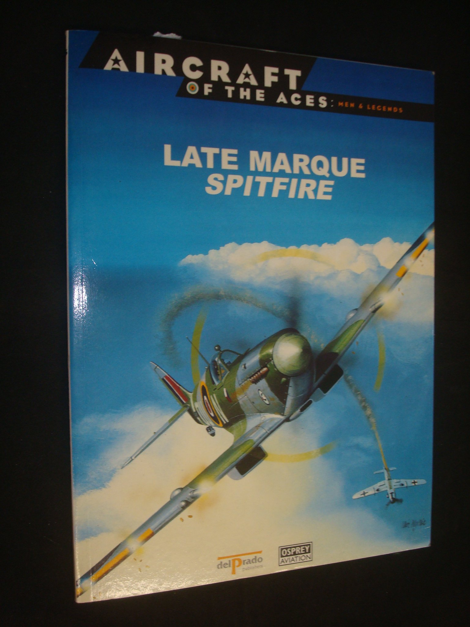 Download LATE MARQUE SPITFIRE ( Aircraft of the Aces: Men and Legends # 26 ) ebook