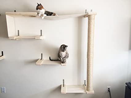 CatastrophiCreations Sky Track   Cat Hammock U0026 Climbing Activity Center    Handcrafted Wall Mounted Cat