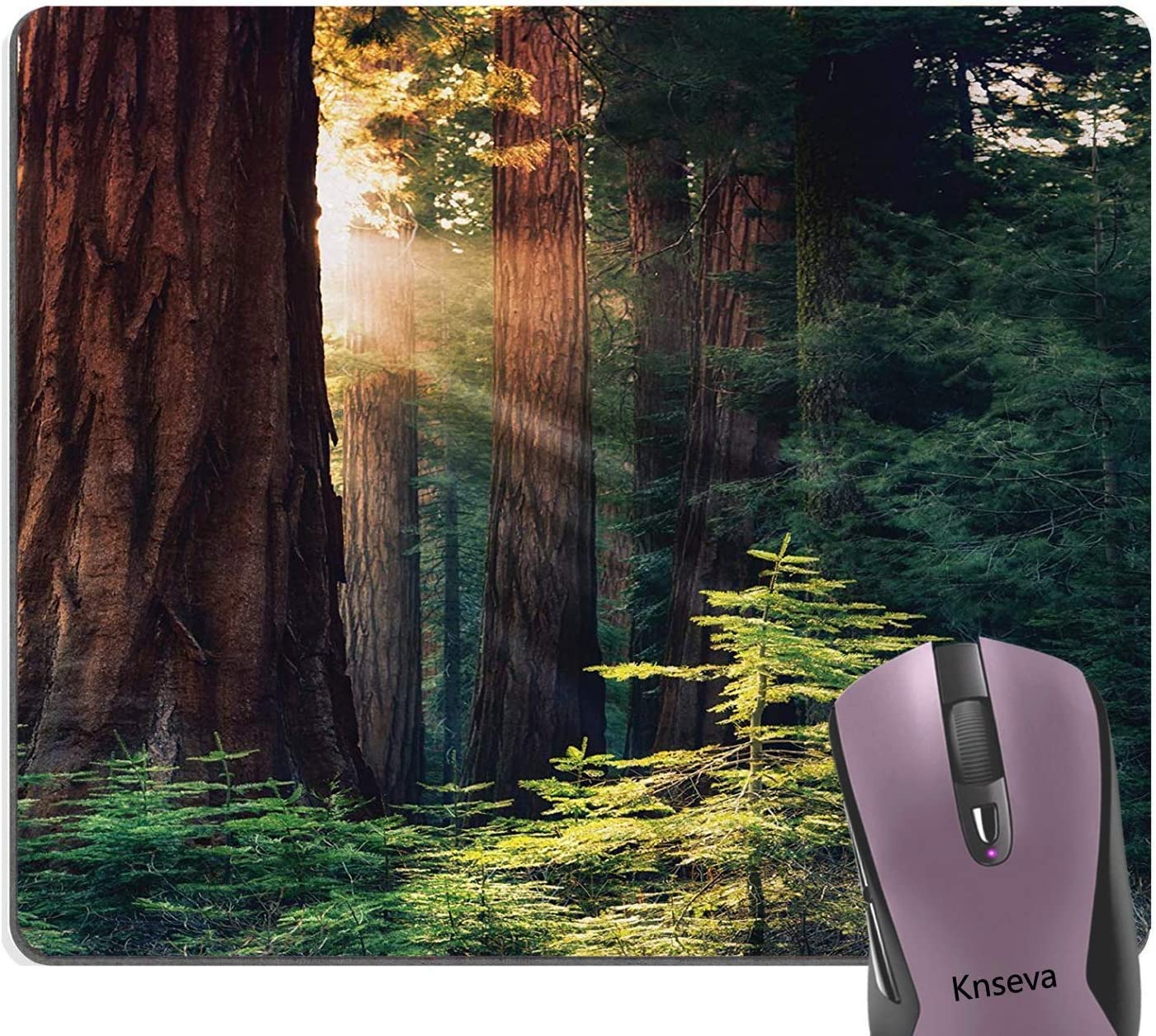 Morning Sunlight in Wilderness Yosemite Sierra Nevada United States Nature Mouse Pads 11.8-inch by 9.85-inch National Parks Thick Old Wood Forest Mouse Pad