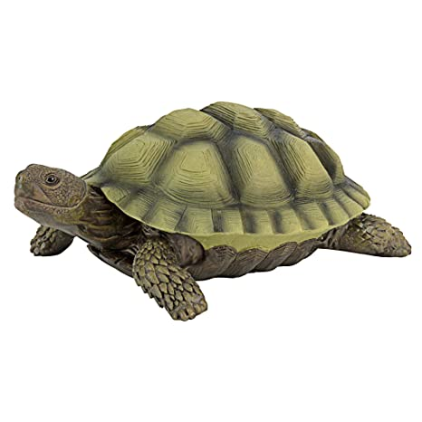 Design Toscano Gilbert The Box Turtle Garden Decor Animal Statue, 9 Inch,  Polyresin,