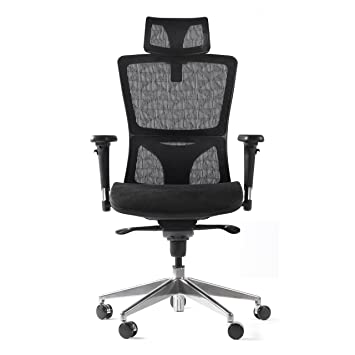 EverKing Ergonomic Office Desk Chair, High Back Mesh Computer Task Chair  With Adjustable Headrest Armrest