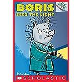 Boris Sees the Light: A Branches Book (Boris #4)