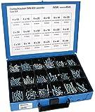 Dresselhaus 4499000854506 Coffret de vis en acier