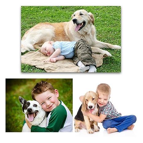 Prevención de pulgas y garrapatas para perros, gatos, perro, pulgas y control de garrapatas, collar de pulgas para perros, gatos (talla única para todos): ...