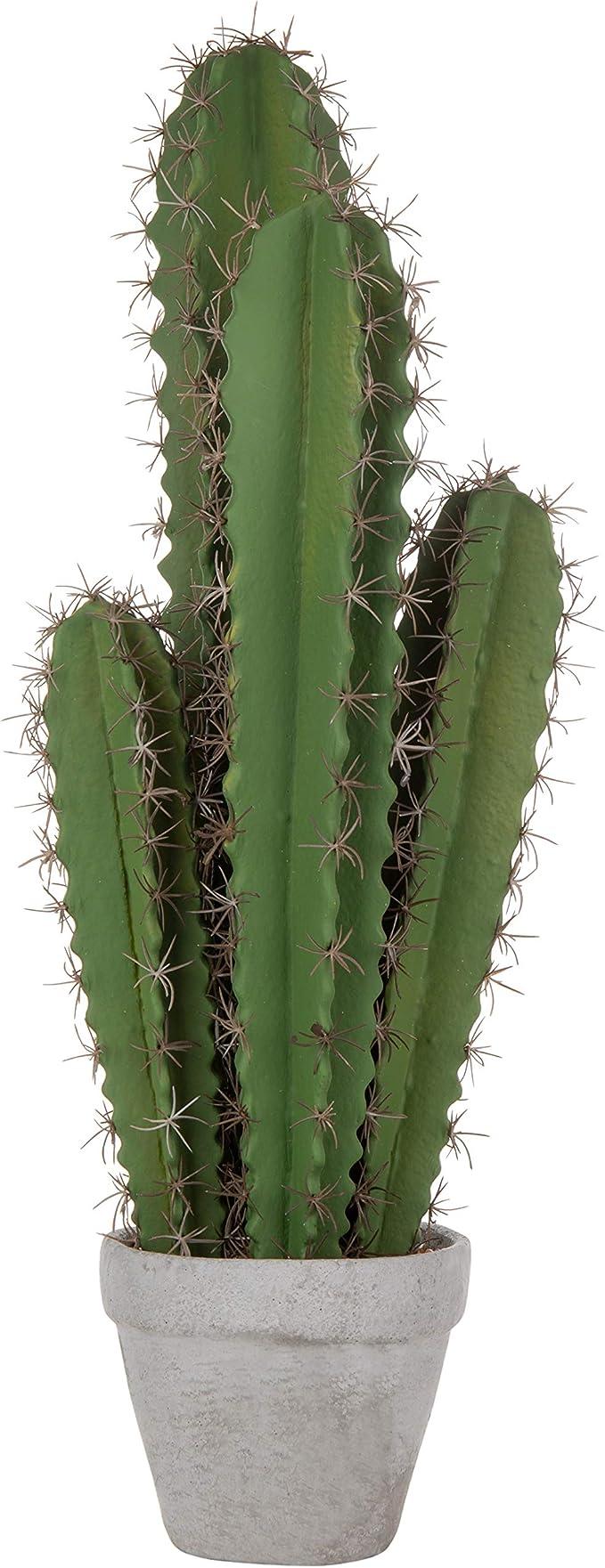 Plantas artificiales de cactushttps://amzn.to/2OrksKH