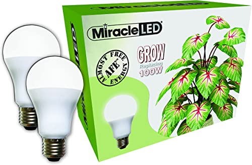 Miracle LED Almost Free Energy 100W Spectrum Grow Lite – Daylight White Full Spectrum LED Indoor Plant Growing Light Bulb for DIY Horticulture, Hydroponics, and Indoor Gardens 604301 2Pack