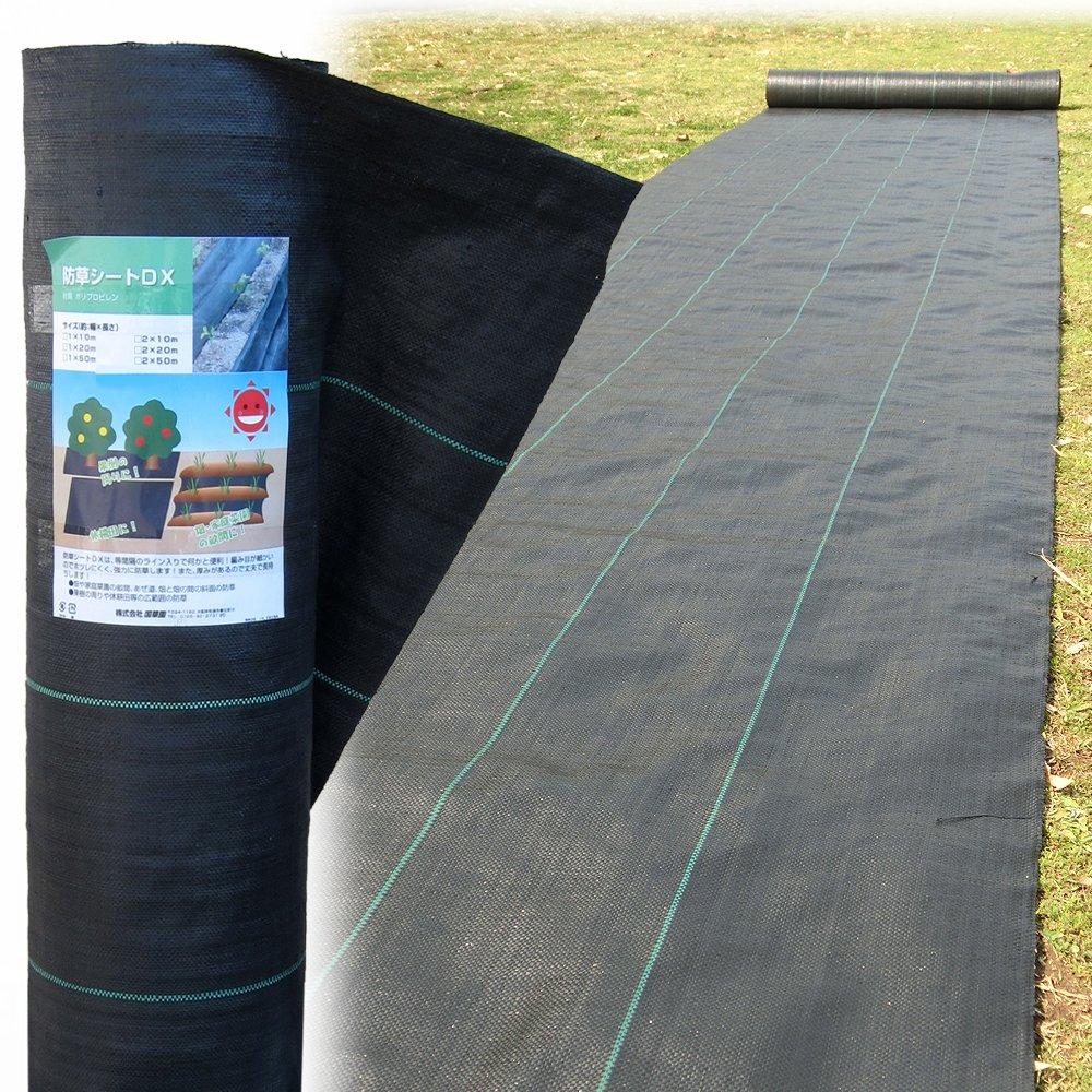 国華園 防草シートDX 1.5m×50m 1巻1組 B012A2SF2A