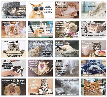 Edition Seidel Set 20 Katzen Postkarten Mit Lustigen Sprüchen Karten Mit Spruch Verrückte Katzen Geburtstag Motivation 20 Karten