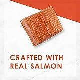 Purina Fancy Feast Classic Pate Savory Salmon Feast