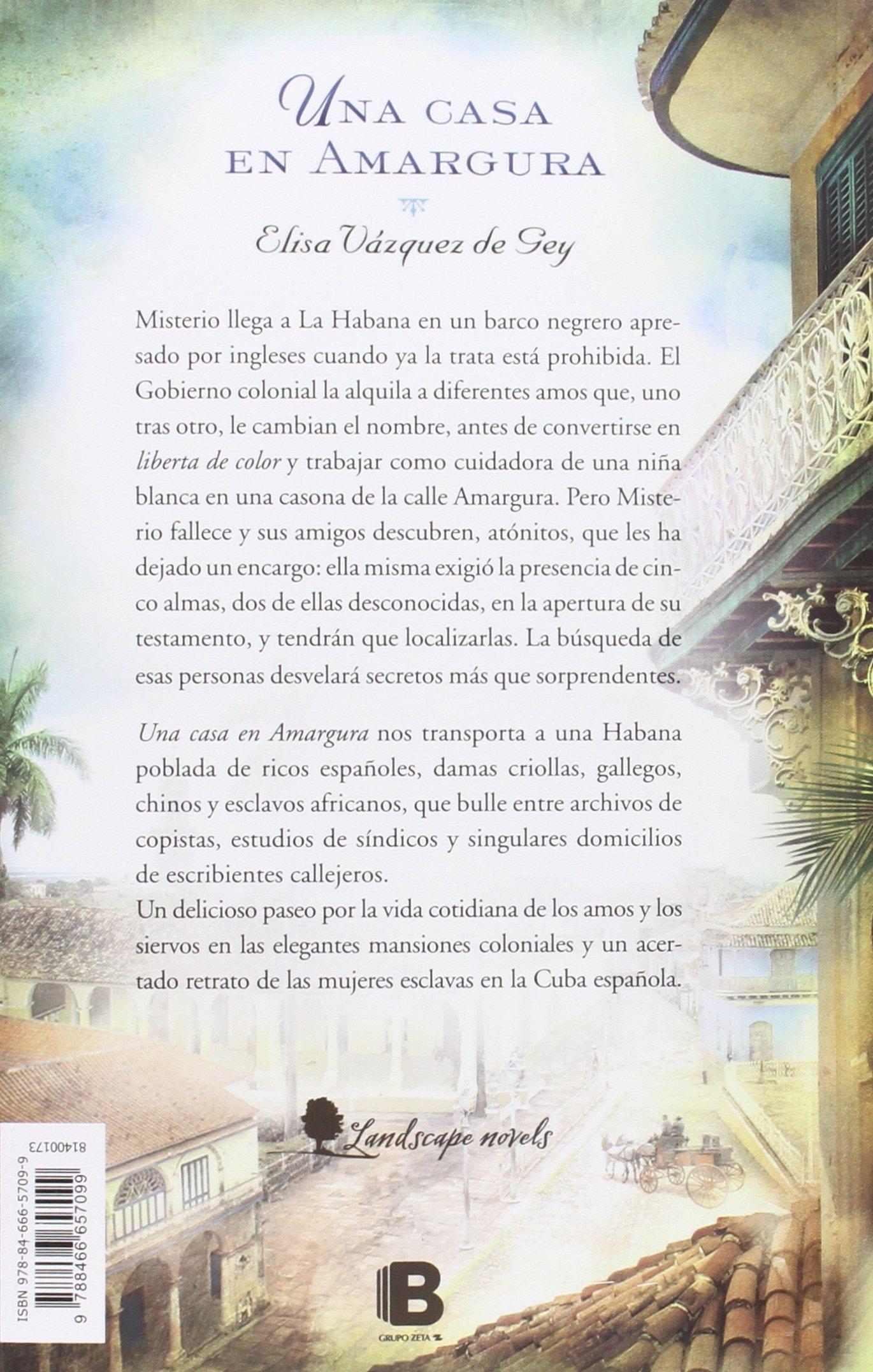 Una casa en amargura (Grandes novelas): Amazon.es: Elisa ...