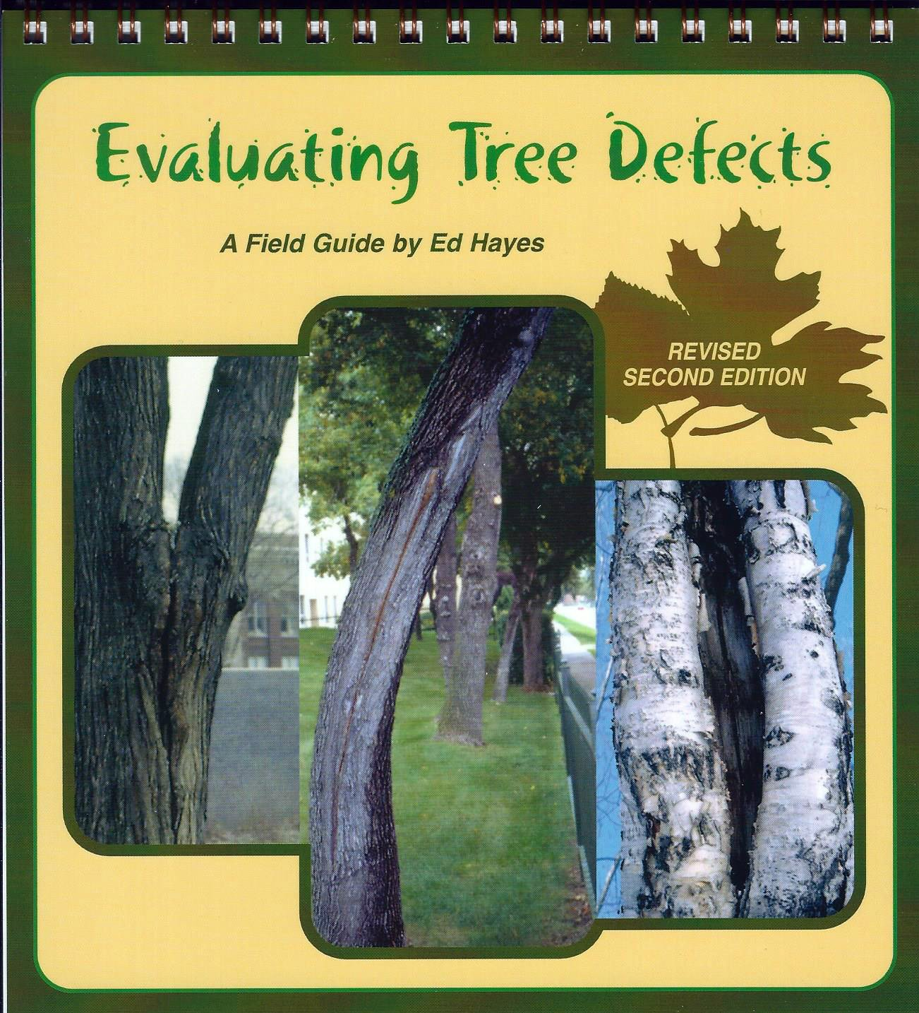 Evaluating Tree Defects: Revised Second Edition