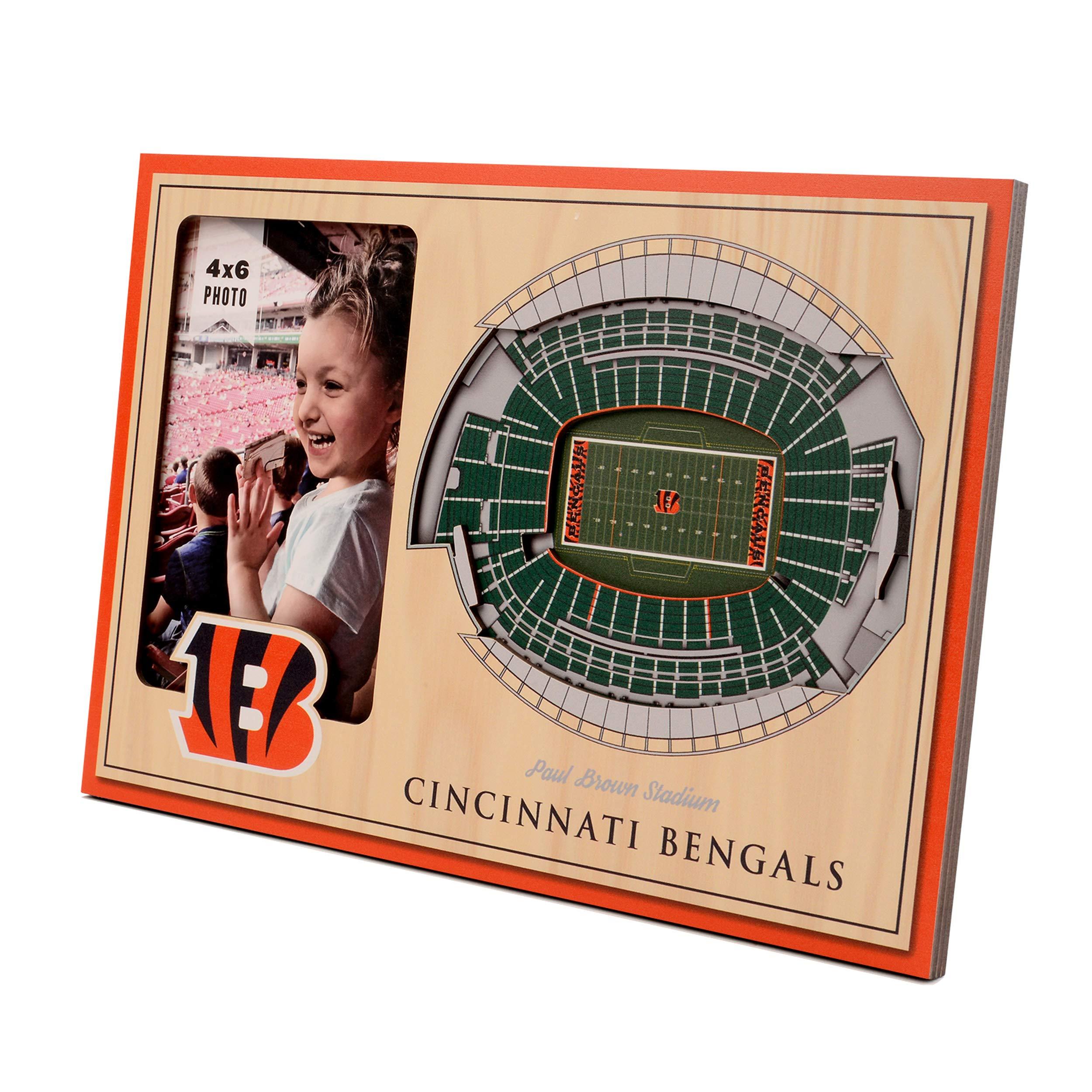 NFL Cincinnati Bengals 3D StadiumViews Picture Frame by YouTheFan