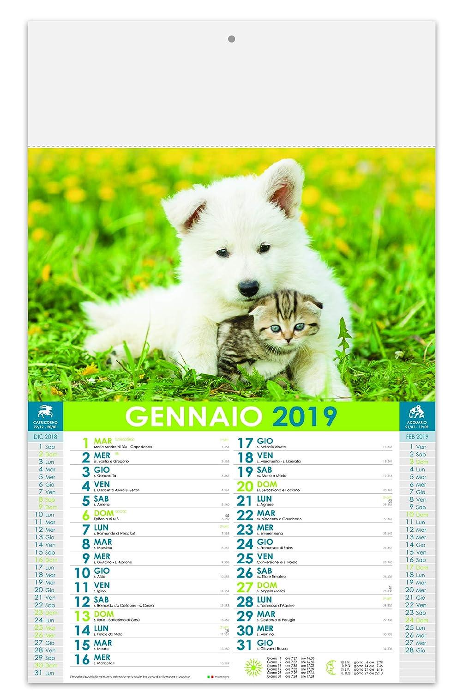 Wandkalender Welcioli  2019 B07H4SJZVK        Ausgang  c07fce