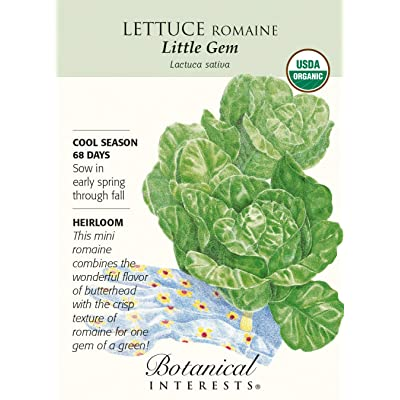 Little Gem Romaine Lettuce Seeds - .75 Grams - Organic by AchmadAnam : Garden & Outdoor