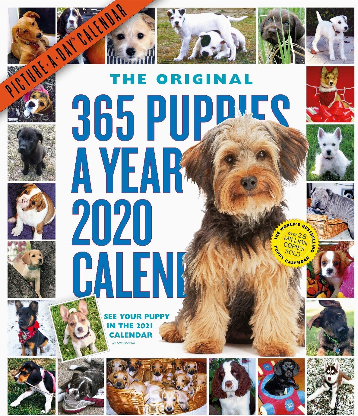 365 Puppies-A-Year Picture-A-Day Wall Calendar 2020 [12