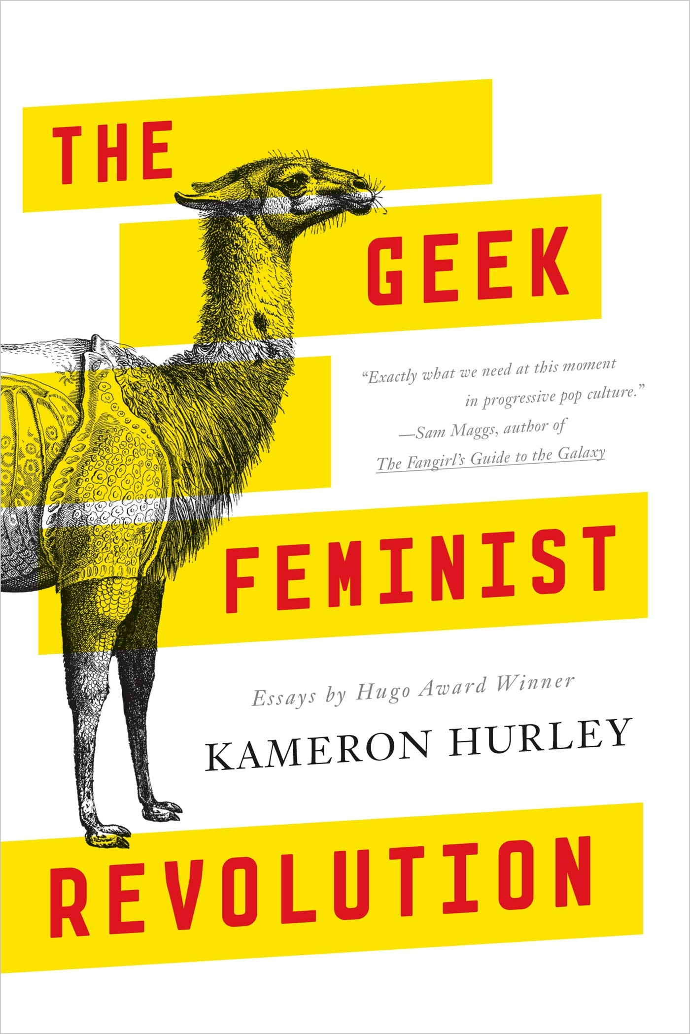 Cause And Effect Of Global Warming Essay Amazoncom The Geek Feminist Revolution Essays  Kameron  Hurley Books How To Write An Introduction For A Narrative Essay also Sample Med School Essays Amazoncom The Geek Feminist Revolution Essays   Evolution Vs Creationism Essay