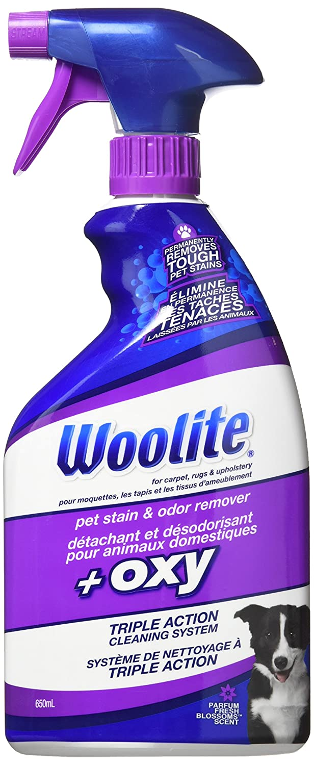 BISSELL 22-Ounce Woolite Oxygen Pet Stain and Odor Remover 0890Y