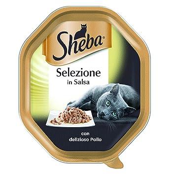 Sheba ybr125 Classics con Pavo – Paquete de 22 Unidades