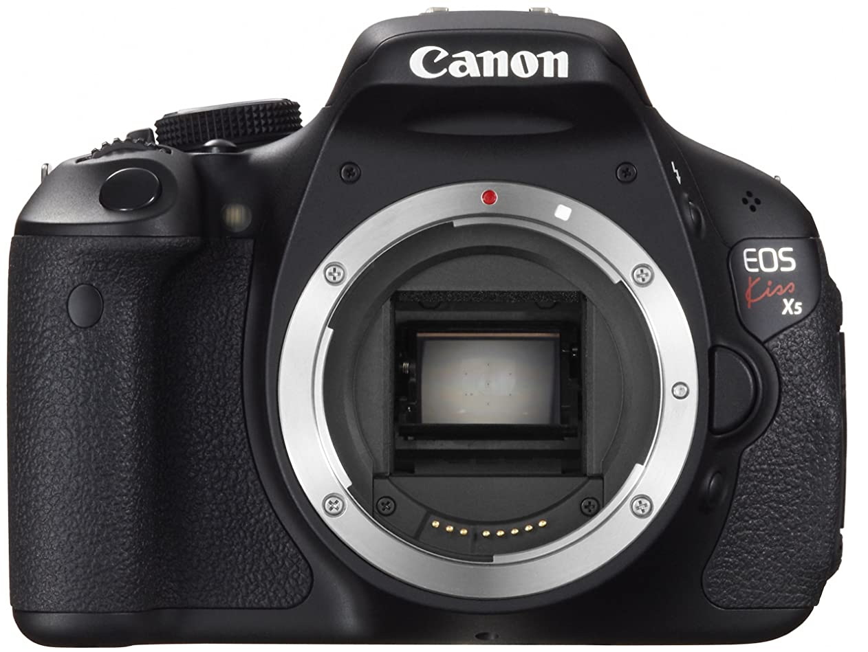 採用刺す聖なるパナソニック ミラーレス一眼カメラ ルミックス GX7MK3 標準ズームレンズキット ブラック DC-GX7MK3K-K