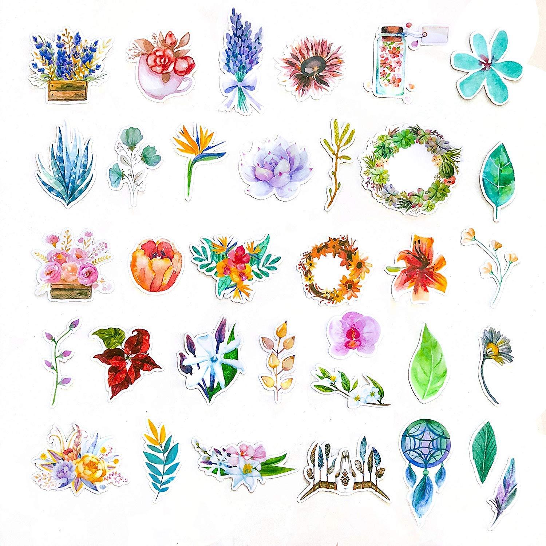 Regalos para ni/ños y adultos Pegatinas para Port/átil Botella /Álbum 37 Stickers de Plantas Pegatinas Decorativas Vinilos decorativos impermeables Pegatinas Florales Jard/ín Cazador de Sue/ños